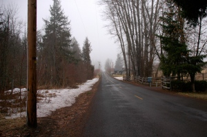 Walking on a foggy morning