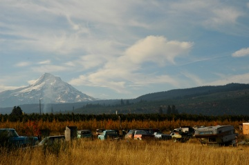 Mt. Hood in the fall