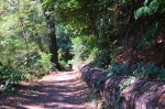 A portion of the Indian Creek trail.