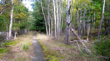 Along the Trail