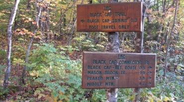 Trail fork, near the summit of Black Cap Mountain