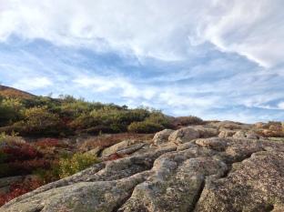 Atop Cadillac Mountain