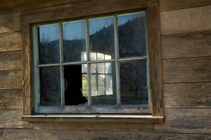A Peek Through the Window of Life With Multiple Myeloma