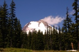 Mt. Hood from the Umbrella Falls Trail
