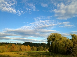 Life is beautiful: walking the Sammamish River Trail with friends in Seattle.