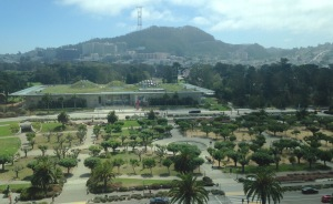 View from atop the De Young Museum. My brother's House is below the distant tower