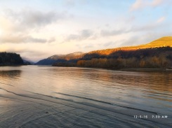 Golden light and a frosty morning on the Columbia River.
