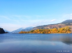 Brilliant late fall morning on the Columbia River.