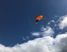 A grownup's kite in the spring sky.