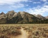 Dusty trail.