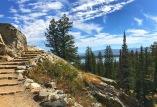 Trail above Jenny Lake.